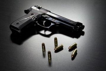 Se analiza ampliar decreto de prohibición temporal de portación de armas
