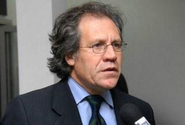"""OEA manifiesta su """"firme intención de trabajar en el futuro con las autoridades electas de Honduras"""""""