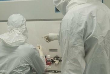 ¡Avance científico! Crean chip que en solo media hora detecta tumores de cáncer