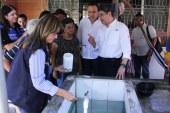 """Gobierno y autoridades de Salud lanzan campaña nacional """"Día D"""" de lucha contra el dengue"""