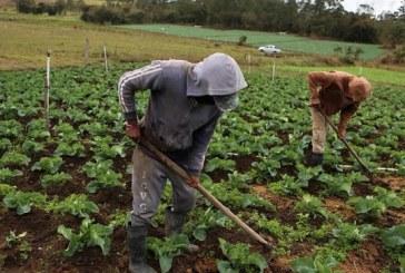 Honduras será influenciada este año por un fenómeno de El Niño débil