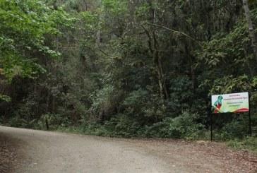 Realizan mejoras y reparaciones al Parque Nacional La Tigra