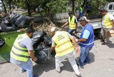 Masivo operativo de limpieza para destruir criaderos de zancudo en colonias sampedranas