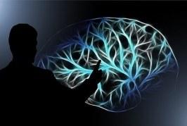 Desarrollan el primer brazo robótico eficaz controlado por la mente