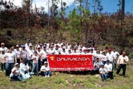 Davivienda siembra más de mil árboles en el Parque Nacional la Tigra