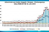 Casos de dengue bajan en 7 % a nivel nacional aseguran autoridades sanitarias