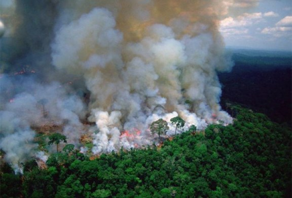 ONU urge a Brasil proteger la Amazonía donde proliferan incendios forestales