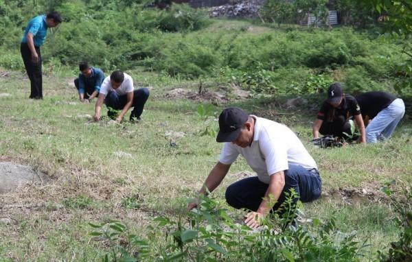 reforestación UTH 1