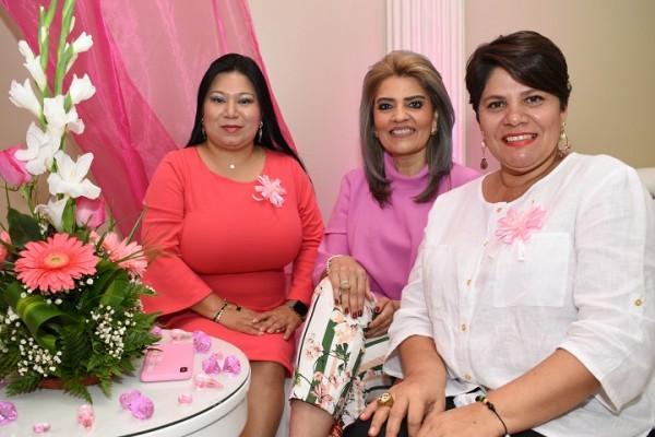 Camaña Rosa Aguas de San Pedro 8