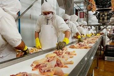 Gobierno y sector avícola garantizan abastecimiento y precio del pollo para el resto del año