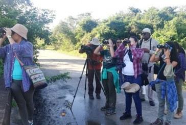 Amantes del avisturismo participan en Conteo Navideño de Aves en la Bahía de Tela