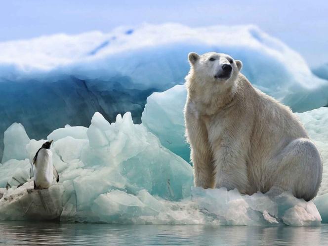 Preocupación por el aumento en las temperaturas en la Antártida