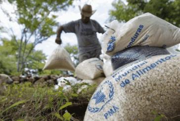 EEUU anuncia apoyo de 4 millones de dólares en asistencia alimentaria para familias hondureñas afectadas por la COVID-19