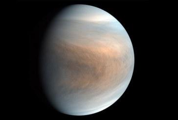 Anuncia multimillonario ruso que financiará búsqueda de vida en Venus