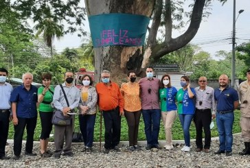 Celebran cumpleaños a longevo árbol de Guanacaste en la Colonia Juan Lindo de San Pedro Sula