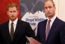 Una llamada telefónica del príncipe William a Harry fue el detonante que precipitó su alejamiento de su gran hermandad