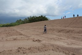 Impulsarán reactivación agrícola en San Manuel con reparación de bordos
